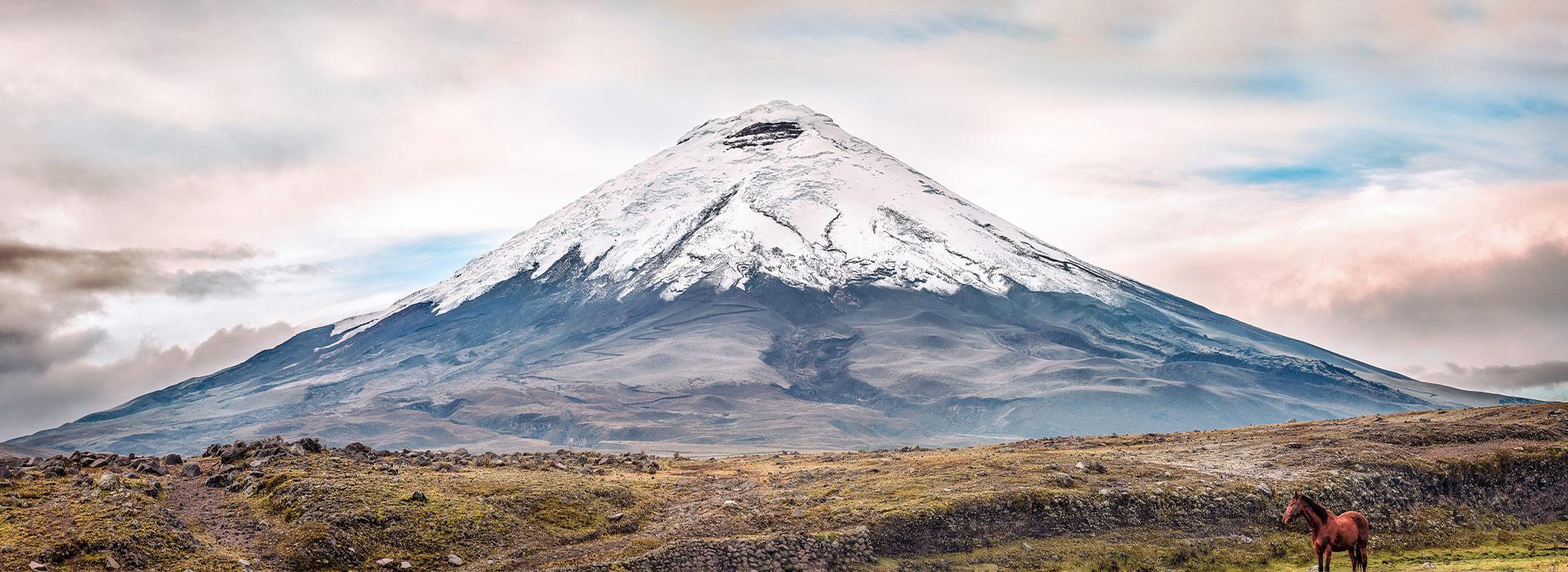 Ecuador Impression